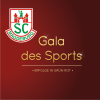 Gala des Sports 2014 - Erfolge in Rot-Grün